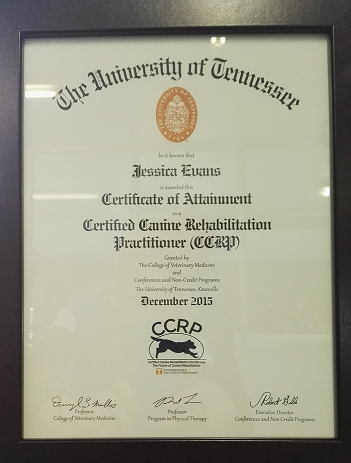CCRP Certificated awarded to Jessica Evans