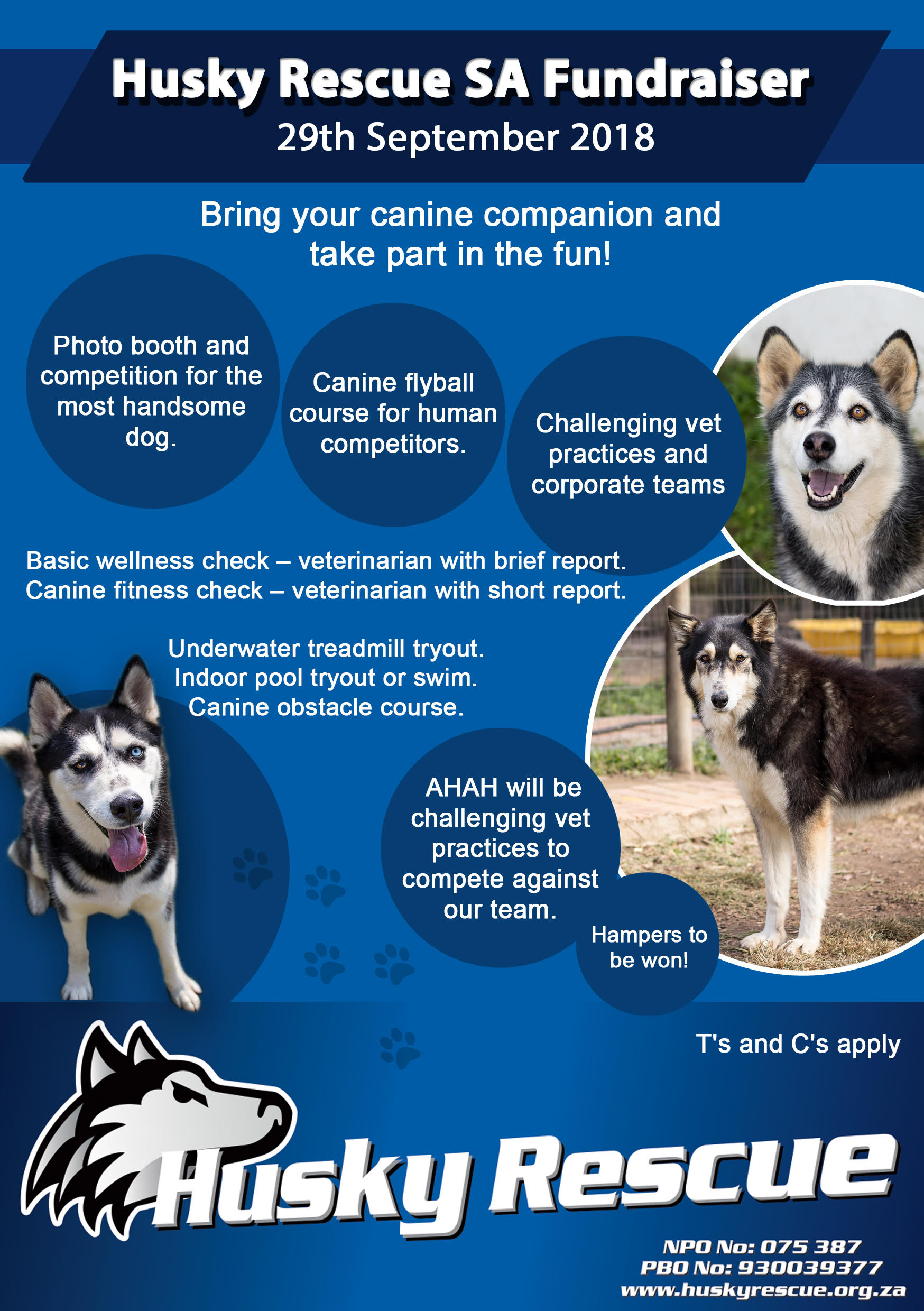 Husky Rescue Flyer with details