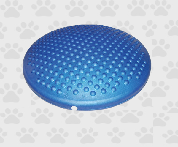 Blue Air Cushion